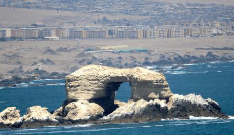 ▷ Tienda Audio Car en Antofagasta?